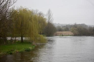 River Avon, misty landscape