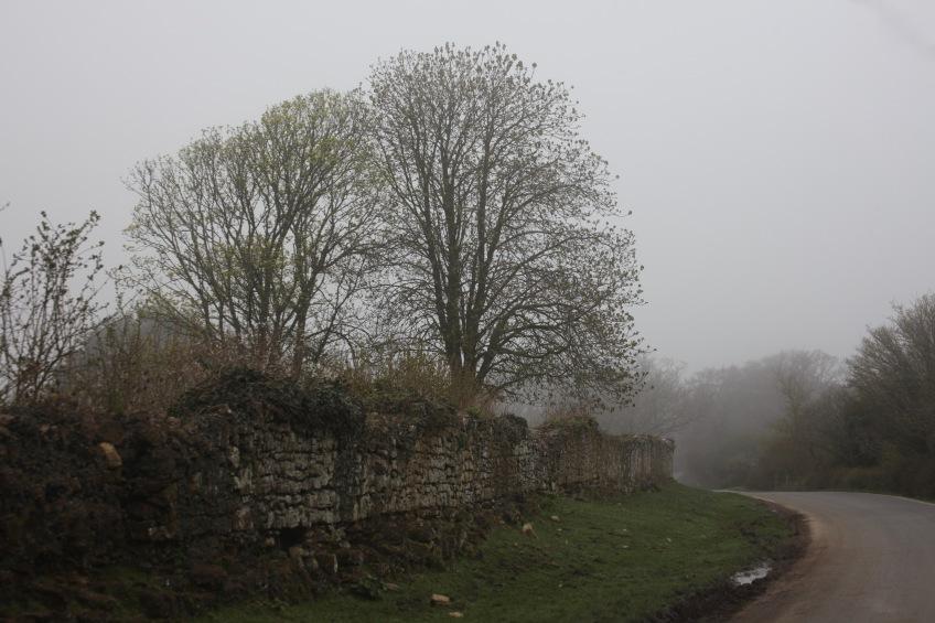 Stone wall on St Leonard's Road