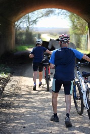 Cyclists approaching ponies under bridge