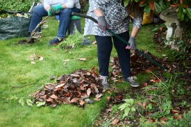 Elizabeth raking, Jackie taking out rose