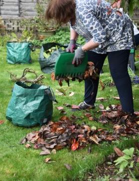 Elizabeth bagging leaves