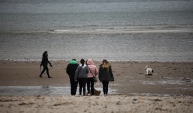 Group and dog walker on beach