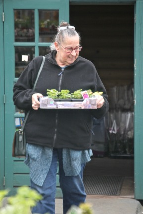 Jackie with geranium tray