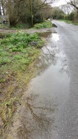 Road waterlogged outside Lymington Plant Centre