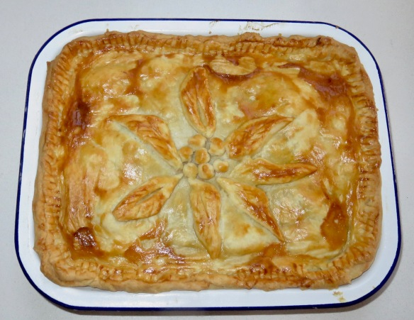 Beef, mushroom and onion pie
