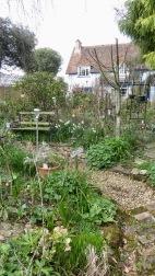 Garden view across Heligan Path