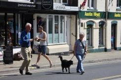 Pedestrians and dog (crossing road)