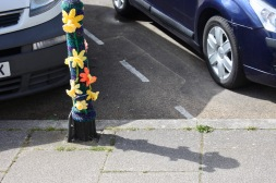 Daffodils on bollard