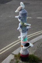 Seabirds on bollard