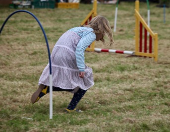 Dog agility contest - leading the way