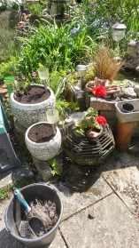 Patio potting