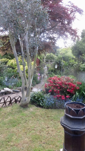Garden view across lawn