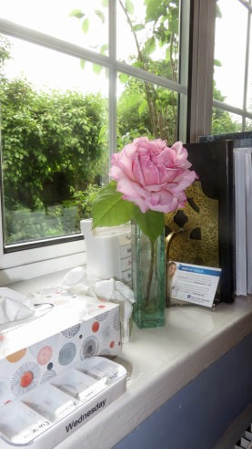 Rose pink fragrant rambler and Dosset box