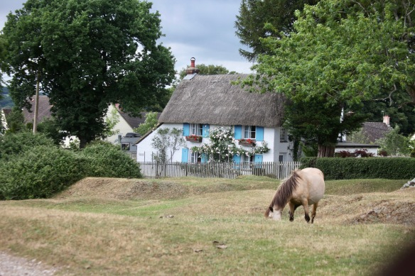 Thatched cottage, pony