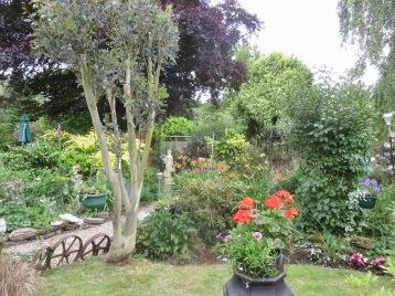 Garden view from grass patch to Rose Garden