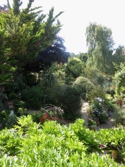 Garden view from bathroom window