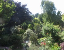 Garden view from dressing room window
