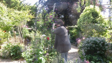 Becky photographing planting