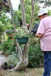 Jackie watering basket in eucalyptus