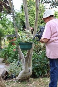 Jackie watering basket in eucalyptus