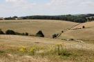 Landscape, Nunton