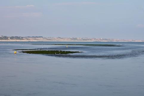 Low tide, buoys