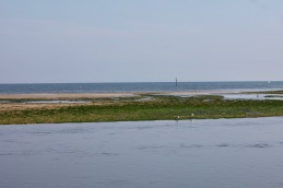 Sandbank with gulls