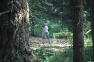 Man and child in forest