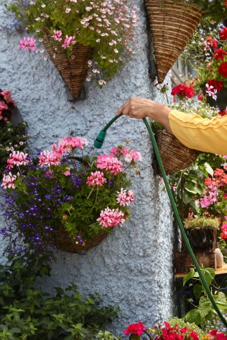 Jackie watering hanging baskets