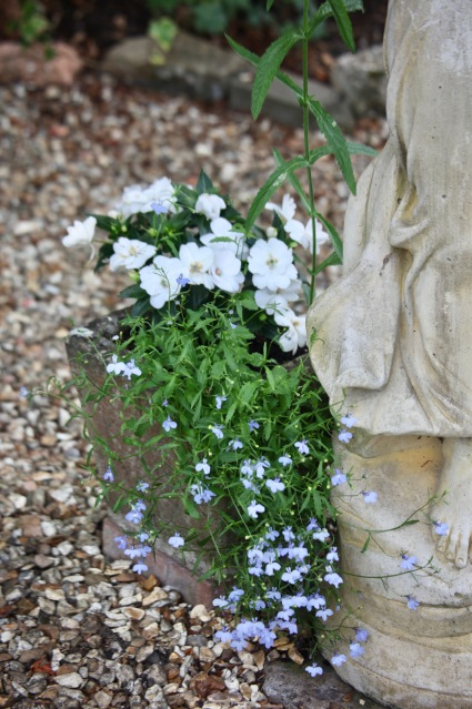 Lobelias and impatiens at Florence's feet