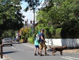 Man, boy & dog crossing road