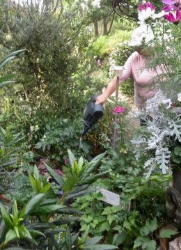 Jackie watering Palm Bed