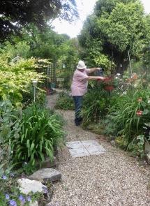 Jackie watering petunias in hanging basket