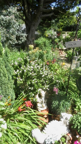 Dragon Bed and Shady Path: hebe, day lilies, snapdragon, knifophia, petunias