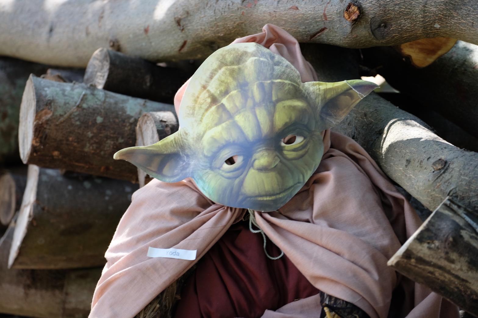 Yoda by Elizabeth