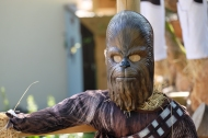 Chewbacca by Elizabeth