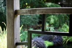 Japanese garden screen