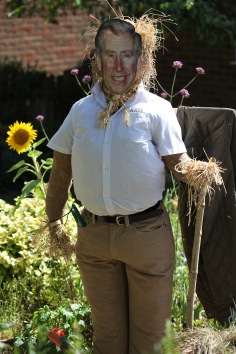 Scarecrow - Prince Charles