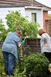 Jackie and Elizabeth positioning wisteria