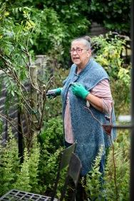 Jackie wiring wisteria, responding to Mum at window