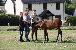 Family with foal