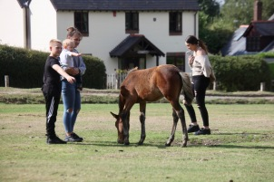 Family and foal