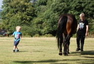 Boys and pony
