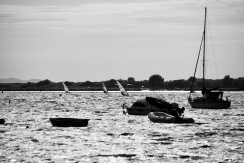 Sailboarders and boats