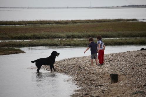 Boys and Labrador