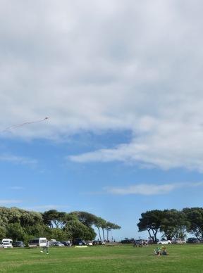 Kite fliers