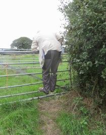 Derrick climbing five barred gate