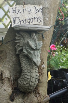 Here be Dragons by Helen K