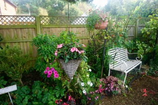 Hanging baskets and Ace Reclaim bench by Helen K
