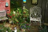 Rose Garden by Helen K